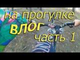 #vlog : На прогулке с #хаски (часть 1/3) 27.11.2016