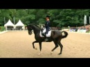 Adelinde Cornelissen KWPN Stallion Aqiedo Grand Prix Special CHIO Rotterdam 72 196%