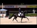 Adelinde Cornelissen Governor V Totilas 2nd Place 83 800% WK kwalificatie Jonge Paarden