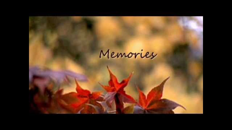 Memories - Maestro Ceyhun(Amazing romantic violin )