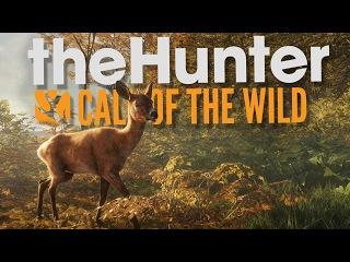 The Hunter Call of the Wild ПЕРВЫЙ ВЗГЛЯД ОХОТИМСЯ ПО НОВОМУ 1