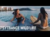 Psychedelic Progressive Psytrance Wild Life Experience En Masse 2016 DJ Mix by Electric Samurai