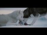 Белый Плен (2006) 720HD