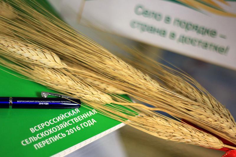 Сельхозперепись в Ростовской области завершена, начинается обработка данных