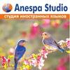 Студии иностранных языков Анеспа Студио (Anespa)
