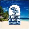 Туристическое агентство Синяя Птица Челябинск
