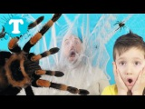 Bad Baby Гигантский ПАУК Атакует - Пауки во рту! Giant Spider Attack / Freak scary kids movie