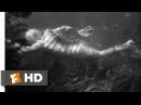Creature from the Black Lagoon (710) Movie CLIP - Underwater Hunt (1954) HD