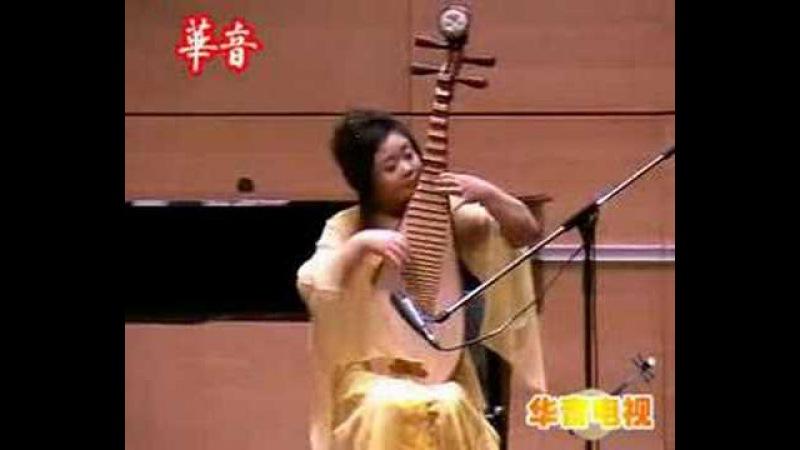 琵琶 Pipa - 樊微 Fan wei plays 寒鸦戏水 Han Ya Xi Shui