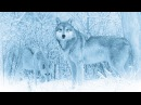 Running With Wolves - Nox Arcana