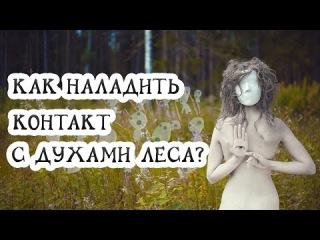 Как наладить контакт с духами леса?