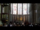 Amazing Singing in Carcassonne Cathedral French Castle Doros Male Choir Music
