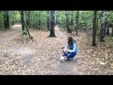 Vlog #1 прогулка в лес🌴🌳🌲