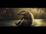 Рождественский ролик про пса, барсука и ежа на батуте