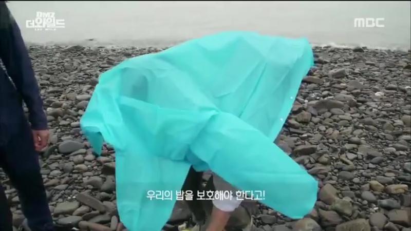 Lee Minho (이민호)
