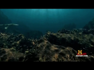 Prehistoric Monsters - History Channel Documentary