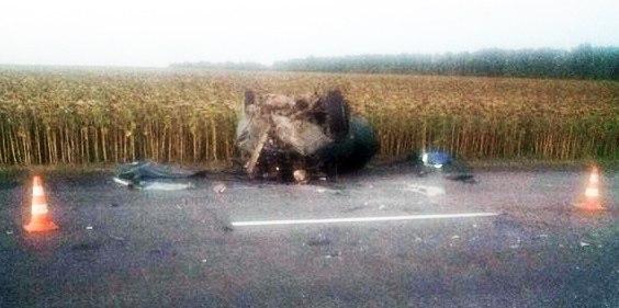 Под Таганрогом лоб в лоб столкнулись «ВАЗ-2115» и «ВАЗ-2109», двое погибших