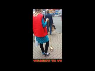 Жесть! Наркоманка гуляет с замороженной курицей на поводке по городу 2016