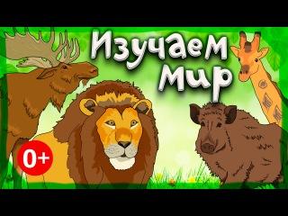 Мультфильм про животных. Развивающие мультики для детей до 4 х лет. СБОРНИК 2.