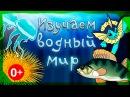 Мультфильм про водный мир с Русалочкой и Царевной Лягушкой. Развивающие мультики для детей.СБОРНИК 4