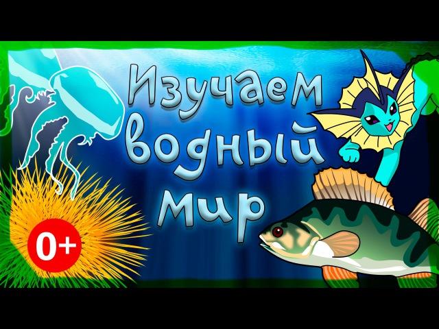 Мультфильм про водный мир с Русалочкой и Царевной Лягушкой. Развивающие мультик...