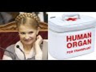 Тимошенко и ее адвокат продают ОРГАНЫ ОПОЛЧЕНЦЕВ клинике США! Органы вырезают Ж ...