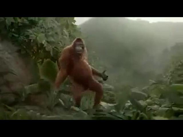 I Like To Move It - Monkey Dance coub