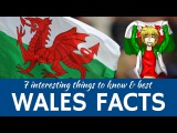 Wales 7 Facts about Welsh Traditions and Interesting Travel Destinations