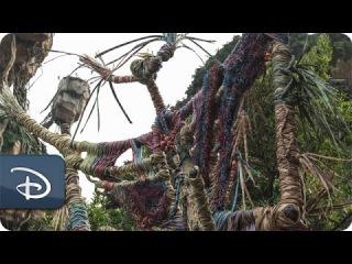 'Placemaking' Pandora - The World of Avatar | Disney's Animal Kingdom