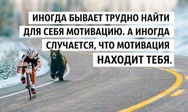 23 человека, напавших на украинское шествие в Перемышле, задержаны: им грозит до двух лет тюрьмы - Цензор.НЕТ 4872