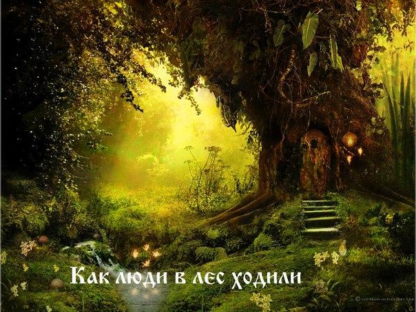 Как люди в лес ходили