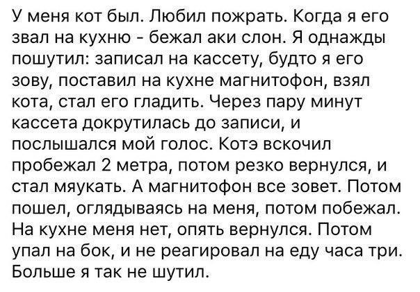 По дороге на полигон на Луганщине разбился КамАЗ с боевиками: шесть российских офицеров уничтожены, - Лысенко - Цензор.НЕТ 2826