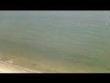 Дилижанс Ах Одесса, жемчужина у моря...