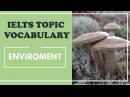 IELTS Vocabulary band 8 : Environment