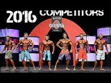 2016 Mr. Olympia - Olympia Qualification Series Men's Physique incredible Body's