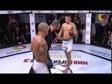 Thomas Almeida vs. Vinicius Zani - MMA Super Heroes 3