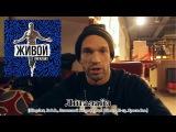 Лигалайз  Про альбом Живой Slingshot, D.O.B., Легальный Бизне$$, Bad Balance, П-13, Ярость Inc.