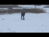 07.01.17 Снежная сказка Прогулка со Спарки ☃️🐕👻💃🏻