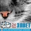 Ветеринарная клиника ЭЛВЕТ. Сеть клиник 24ч СПБ