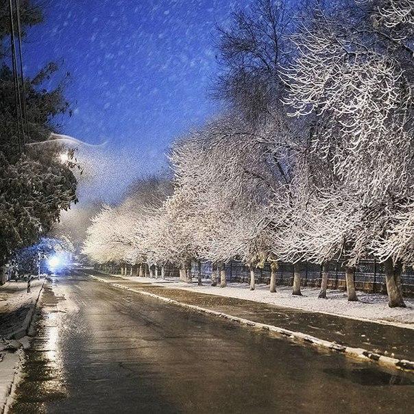 Фото Романа Злобина