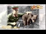 Солдаты Карельского фронта