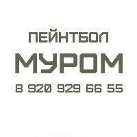 Логотип Пейнтбол в Муроме 8 920 929 66 55