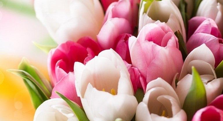 Акции к празднику 8 марта