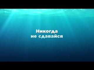 _v_poiskaKH_dori_