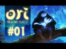 Ori and the Blind Forest Definitive Edition - Обзор, Прохождение 1
