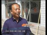 A program about  nantushan luhegun,produced by Yantai TV.