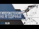 ГИПЕРЭКСТЕНЗИЯ НА Ягодичные ubgth'rcntypbz yf zujlbxyst