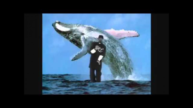 WHALE SNOOP DOG REMIX OF I LOVE YOU AND I MISS YOU!