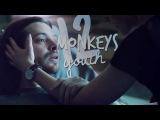 12 monkeys  Youth  THC