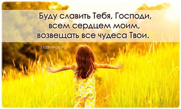 Фото №456239930 со страницы Катеринки Соляник